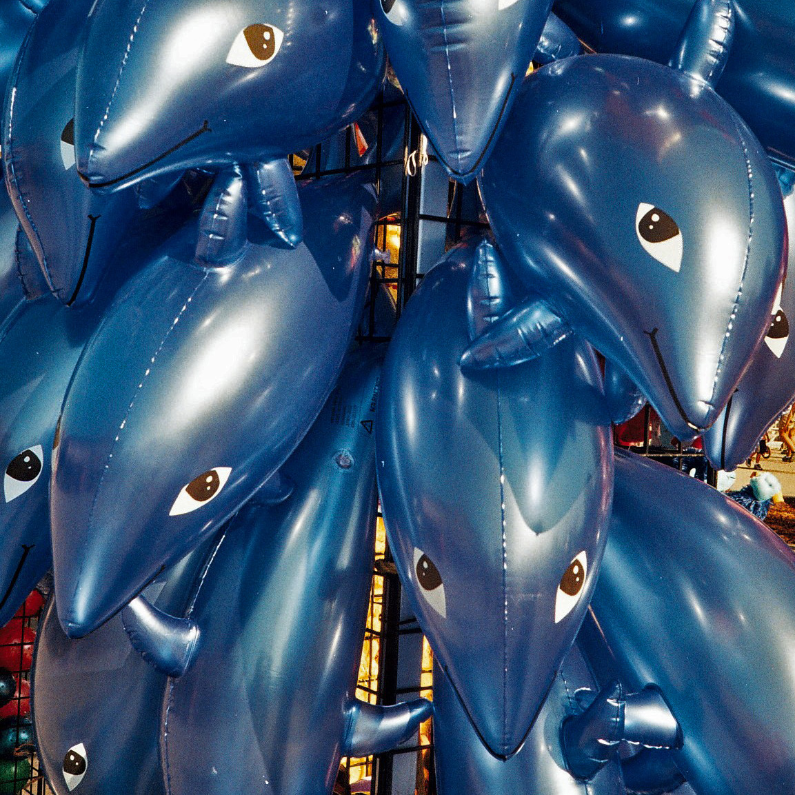 Blow-up dolphins