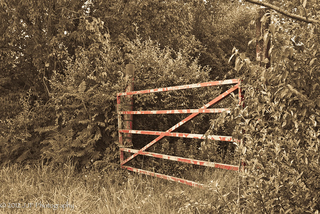 2012_Jul_22_Fences_003