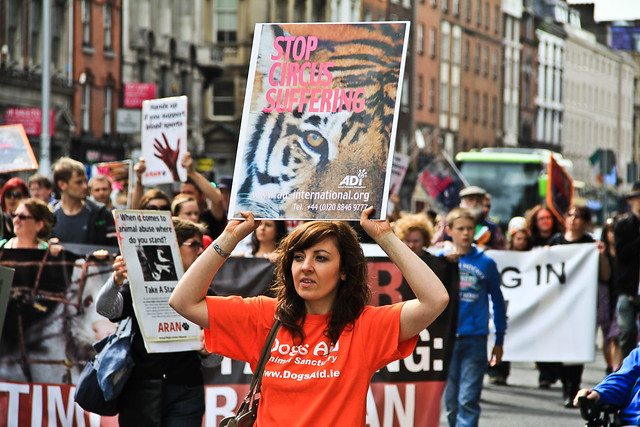 || OBSERVE || PUBLIC OPINIONS || Animal Rights Protest March || Dame Street || Dublin || Republic of Ireland ||