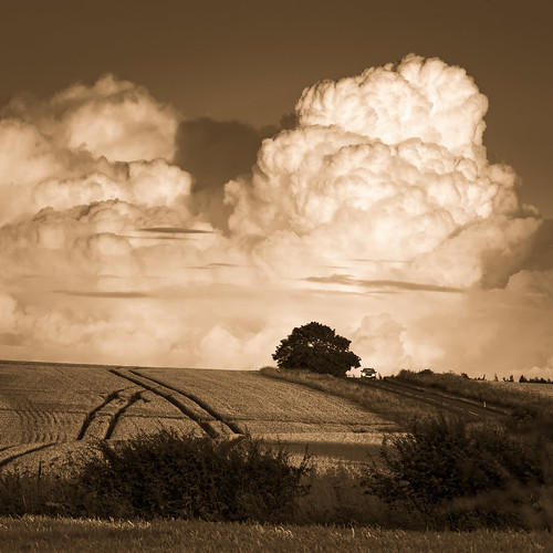 Wolds-Car and Clouds