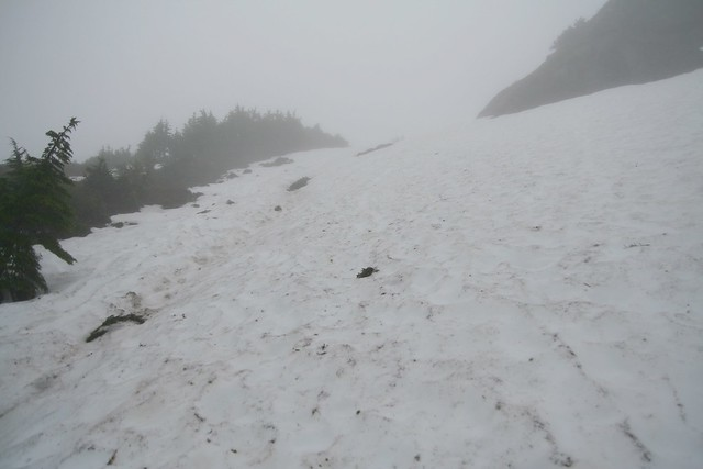 elevation 2550