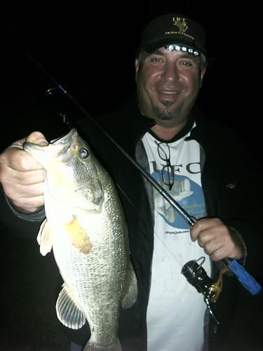 2.5 Pound Largemouth Bass on a Big Bear Worm Rod