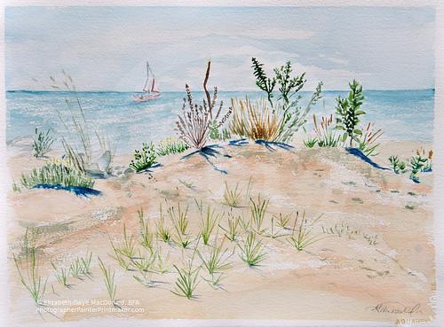 Cedar Beach en Plein Air by photographerpainterprintmaker