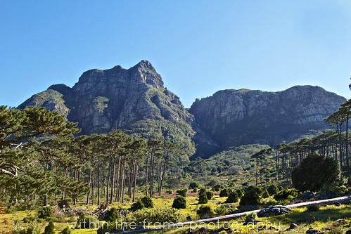slopes of Table Mountain