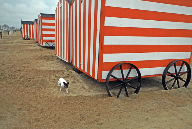 red huts in the Knokke Heist beach (Belgium)