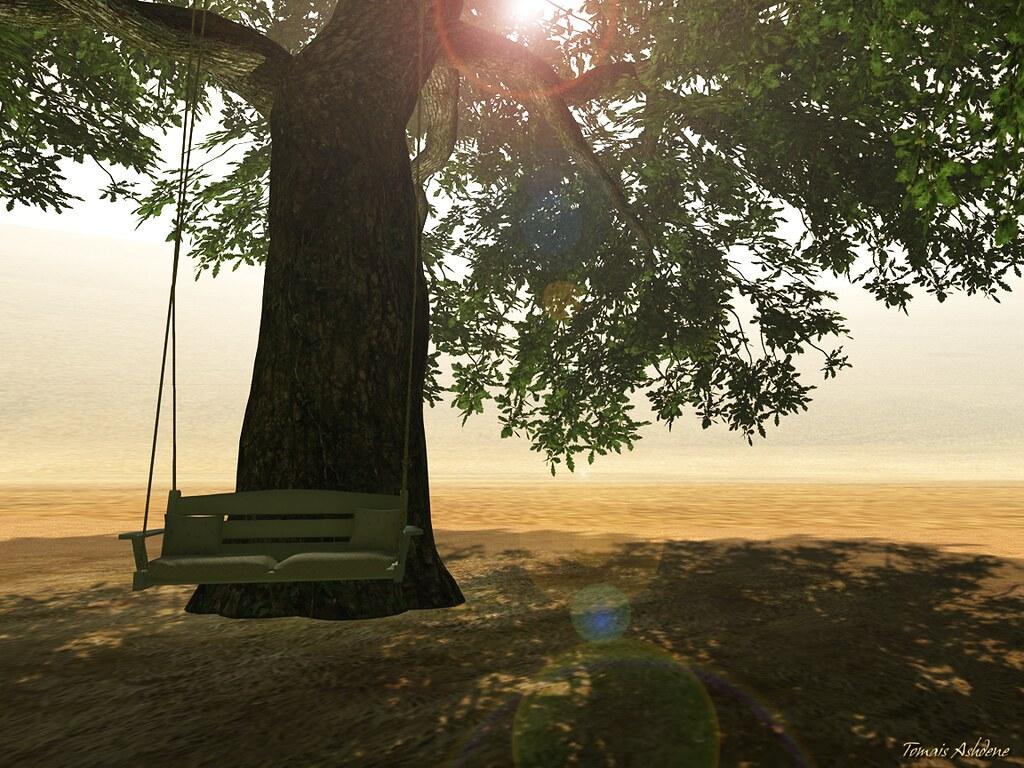 A swing at Noweeta Grassland (by Tomais Ashdene)