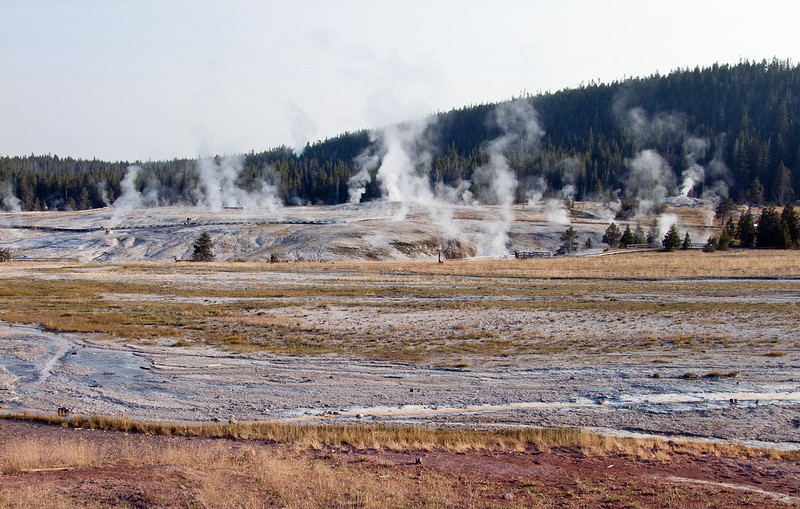 Hydrothermal Steam rising from Geyser Hill near Old Faithful