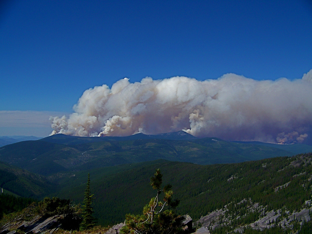 Chippy Creek fire of 2007