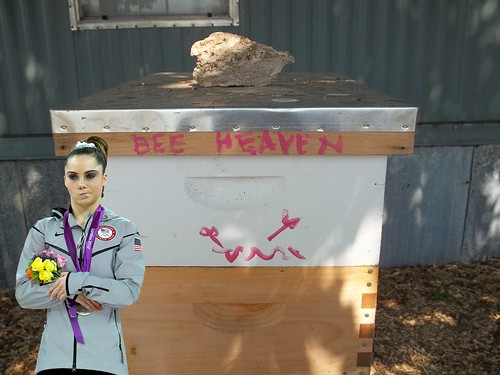 McKayla is not impressed with your tagging