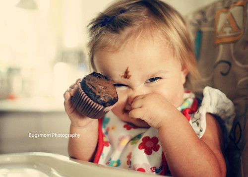chocolate cupcake lily