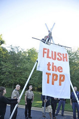 flush the tpp