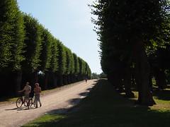 Frederiksberg Garden. Sunny Summer Days in Copenhagen