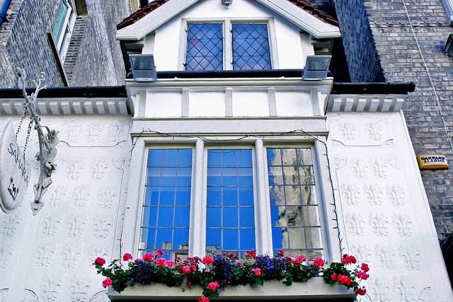 cambridge windows