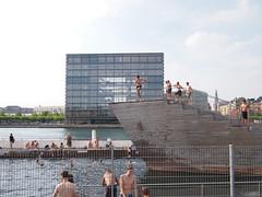 Island Byrrge Harbour Pool, Sunny Summer Days in Copenhagen
