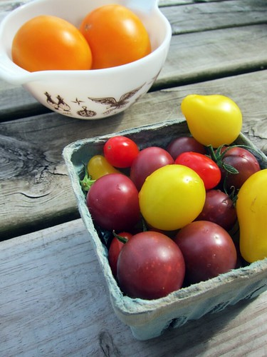"<a href=""http://www.flickr.com/photos/37675965@N02/7924803342/"" title=""Farmer's Market Tomatoes by keddylee, on Flickr""><img src=""https://i1.wp.com/farm9.staticflickr.com/8442/7924803342_4dbb078a7f.jpg"" width=""375"" height=""500"" alt=""Farmer's Market Tomatoes""></a>"