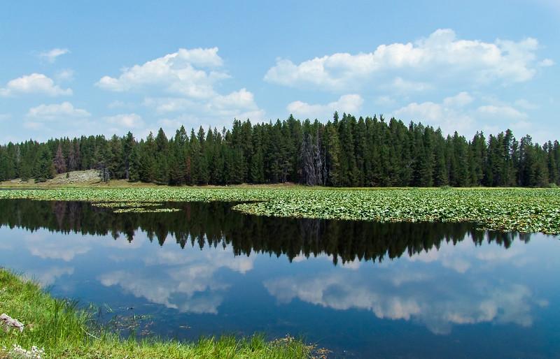 Swan Lake, Grand Teton National Park