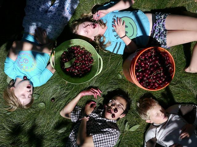 Death by Cherries