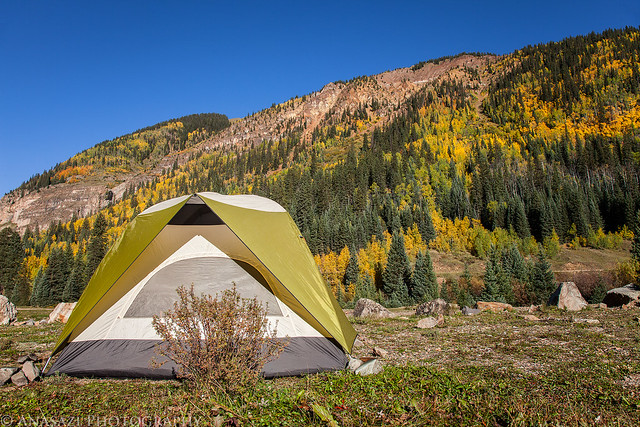 Mineral Creek Camp