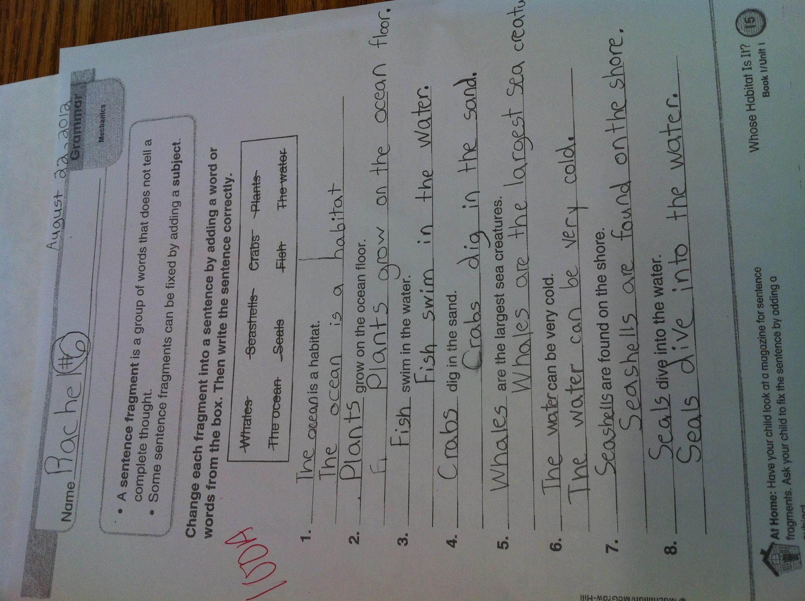 Sentence Fragment Worksheet