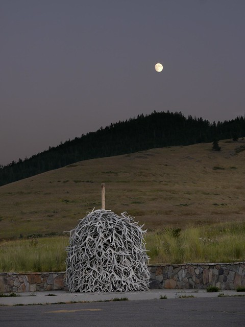 Moon and a Stack o' Antlers
