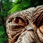 Cragside carving 2