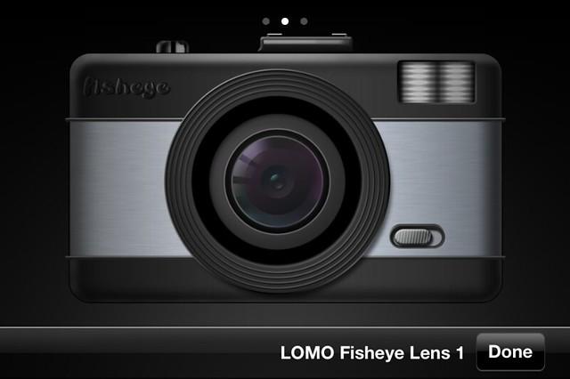 Camera Roll-3902
