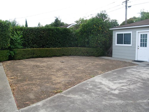 Empty yard, view from driveway