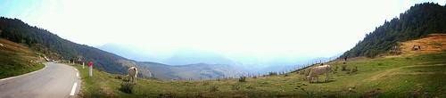 Sur la route des cols Pyrénées