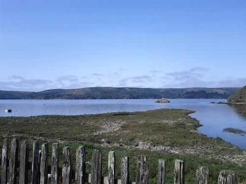 Hog Island View