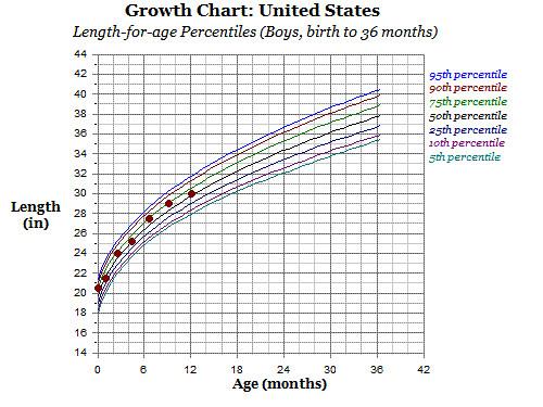 growth chart 12 months -length