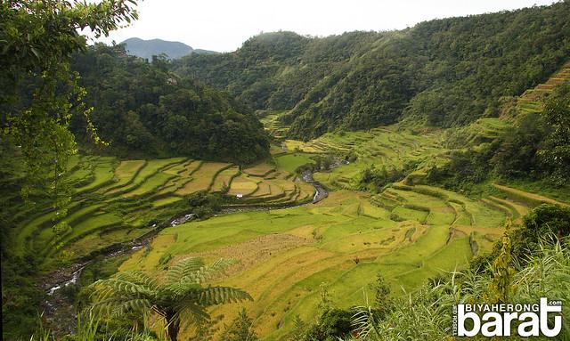 Guihob Natural Pool & Rice Terraces Banaue Ifugao