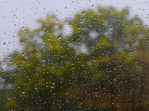 275/366 - Raindrops by Flubie