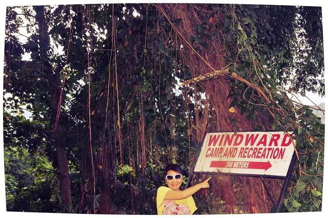 Windward Farm