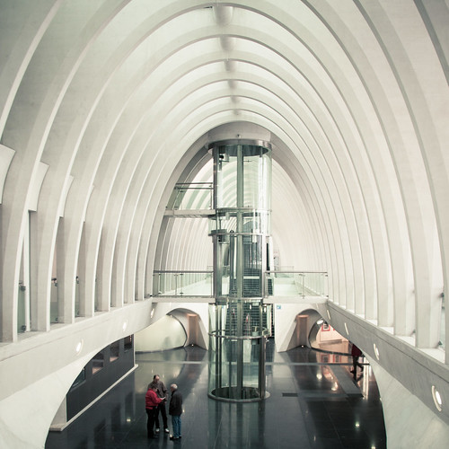 Lost in Structuration : a Whale or a Cathedral ? (Gare de Liège-Guillemins) - Photo : Gilderic
