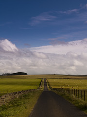 on the road in the Scottish Borders