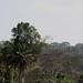 Cameroon impressions - IMG_2412_CR2_v1