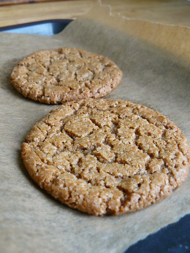Speculoos Spread Cookies