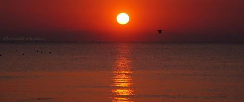 L'alba nella perla dell'Adriatico [Grottammare AP]