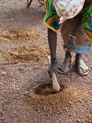 Innovative farming practices in the Sahel (Credits: CGIAR Climate / FlickR)