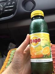 Pago citrus