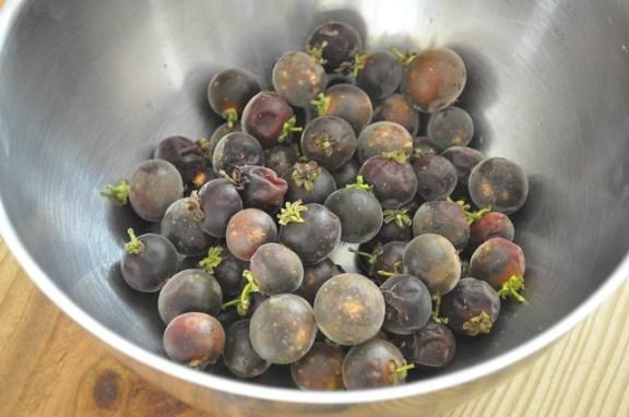 Ketembillas - Puerto Rican Cranberry
