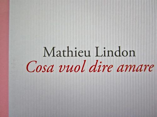 Mathieu Lindon, Cosa vuol dire amare; Barbès 2012. [resp. grafica non indicata]; fotog.: A. Robbe-Grillet, C. Simon, C. Mauriac, J. Lindon, R. Pinget, S. Beckett, N. Sarraute, C. Ollier, 1959 © M. Dondero. Copertina (part.), 2