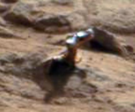 CURIOSITY sol 173 Another Martian flower