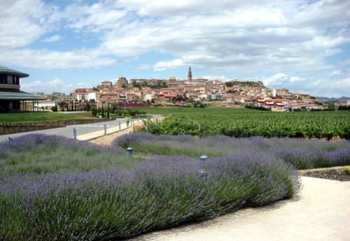 Rioja part II 451