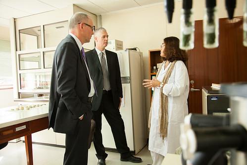 Frank Rijsberman, CEO of CGIAR Consortium visits ILRI genebank