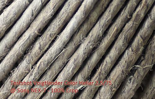 Testshot Voigtländer Color Heliar 2.5/75 @ Sony NEX-7 100% Crop