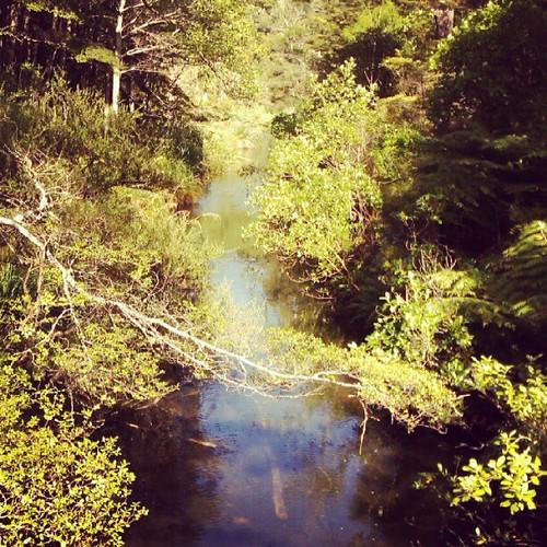 Meandering streams