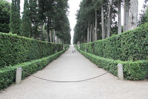 Cypress Lane, Boboli Gardens