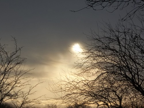 20121201-14_Watery Winter Sun_By Craig by gary.hadden