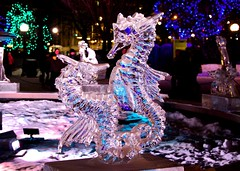 Winterlude Sea Horses in Ice